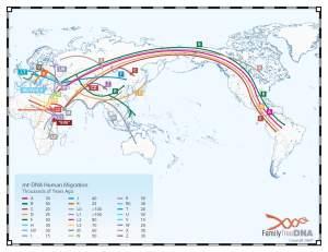 mtdna_migrationmap_(FTDNA2006)